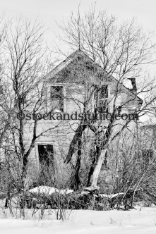 Old House & Trees (Black & White)