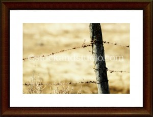 fence10-framed