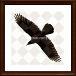 raven2-sq-framed