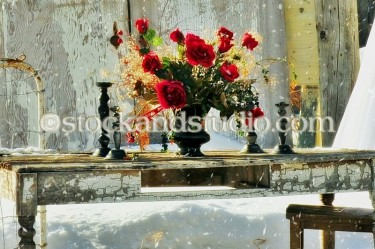 Shabby Chic Red Roses on Table (Winter Scene)
