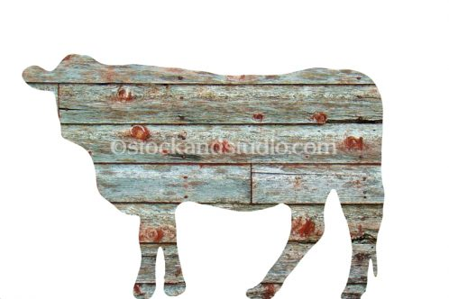Cow Shape With Infilled Image