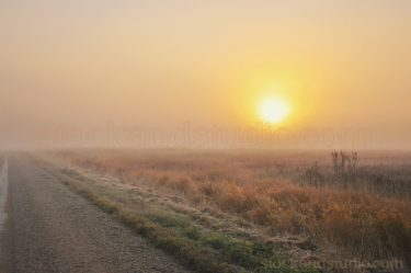 Foggy Sunrise Countryside