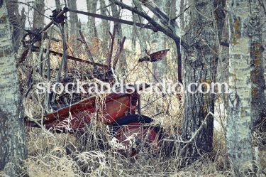 Old Farm Machine with Trees